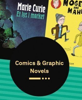 Stunning Graphic Novels - for young and old